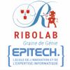 """RIBOLAB - Atelier """"création d'une appli mobile"""" - ANNULÉ"""