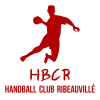 Rencontre de HANDBALL