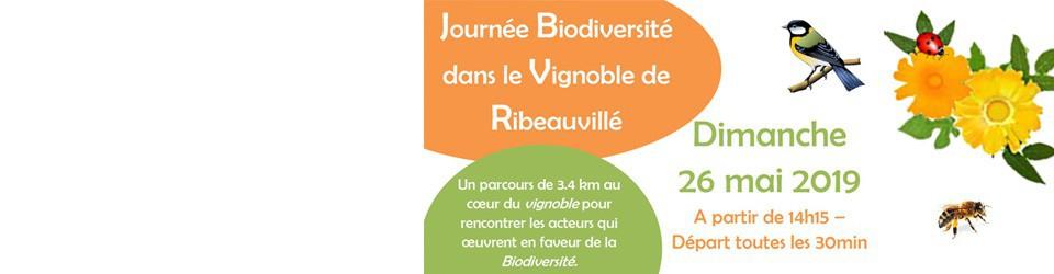 Journée Biodiversité